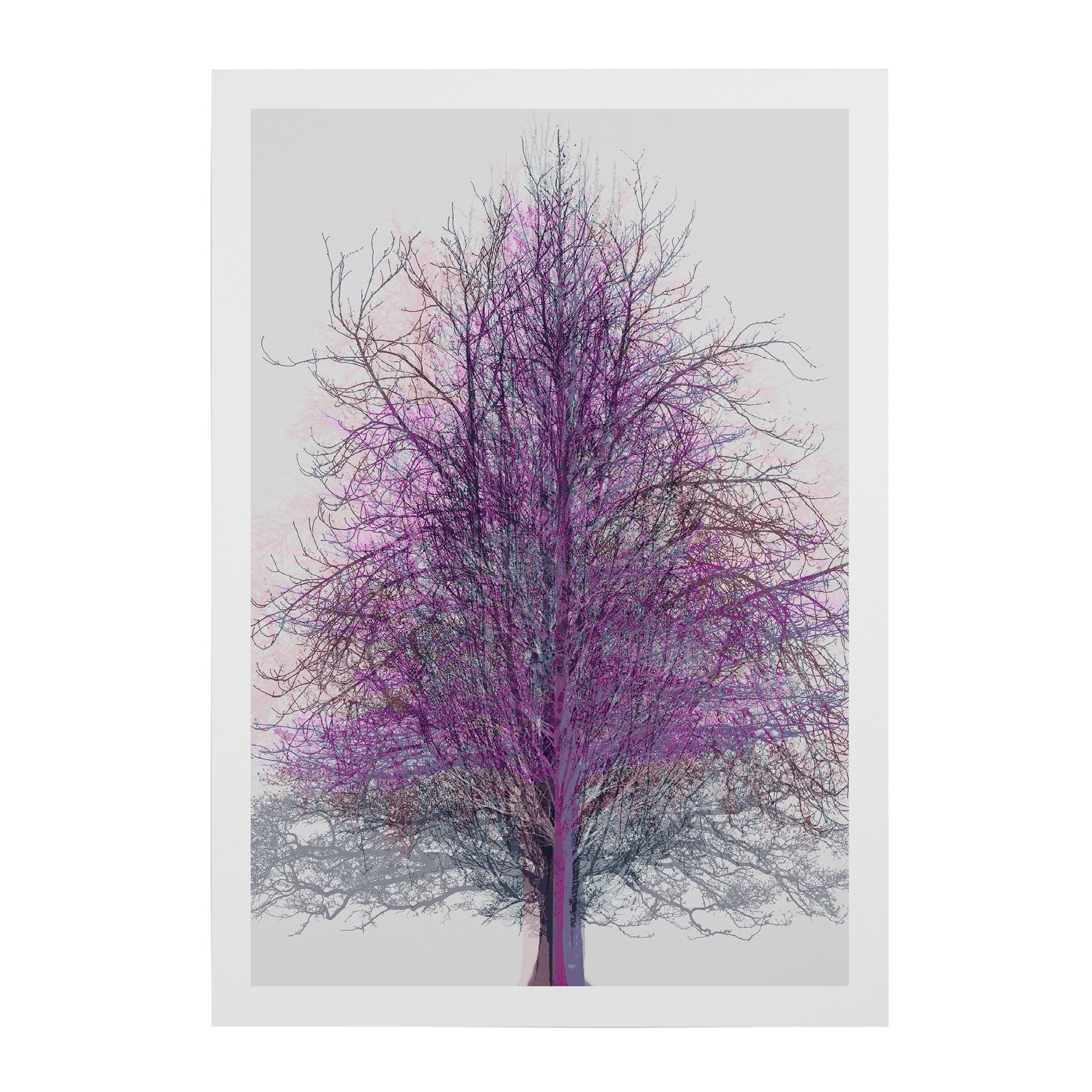 TREE-WEB-PICS-10