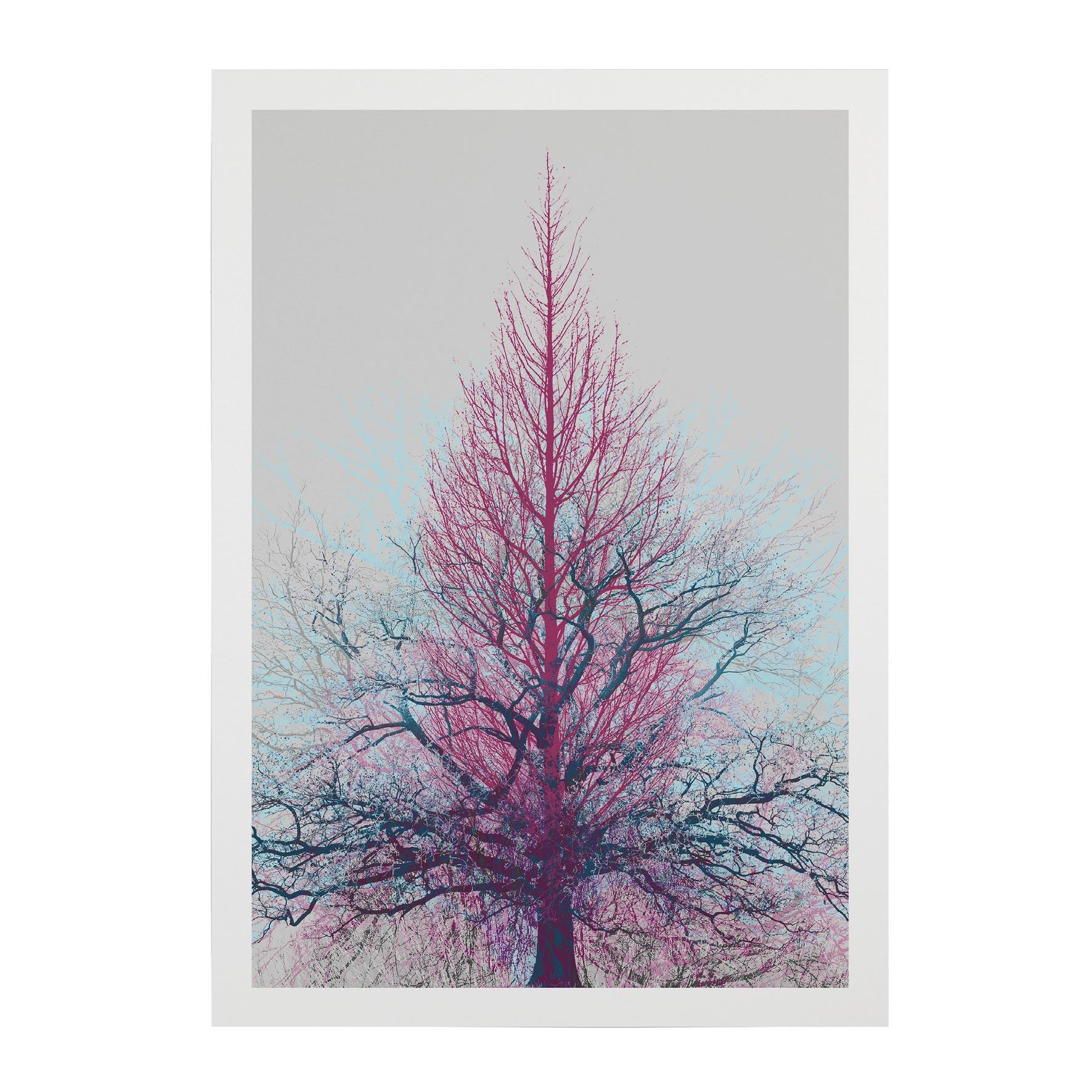 TREE-WEB-PICS-12
