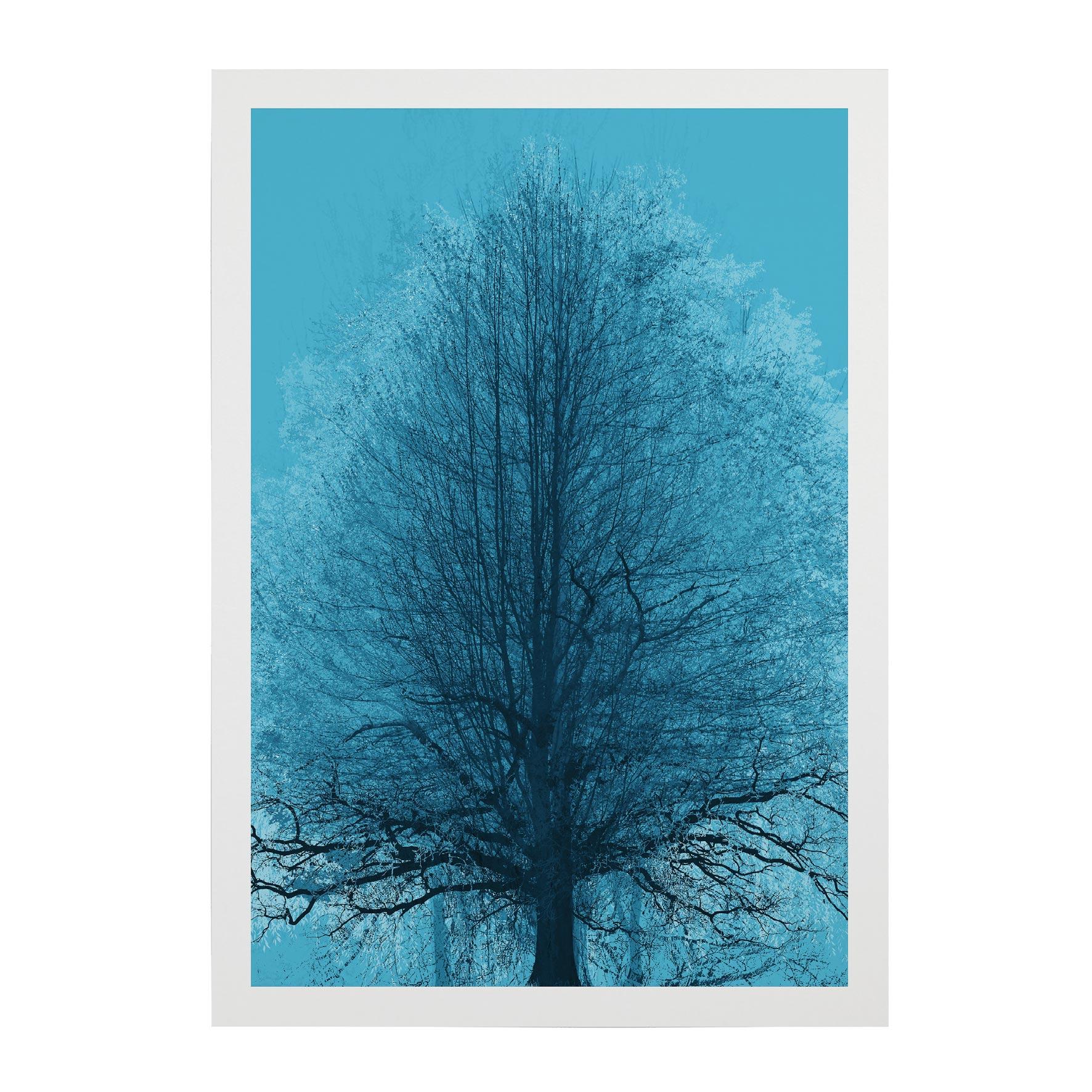 TREE-WEB-PICS-14