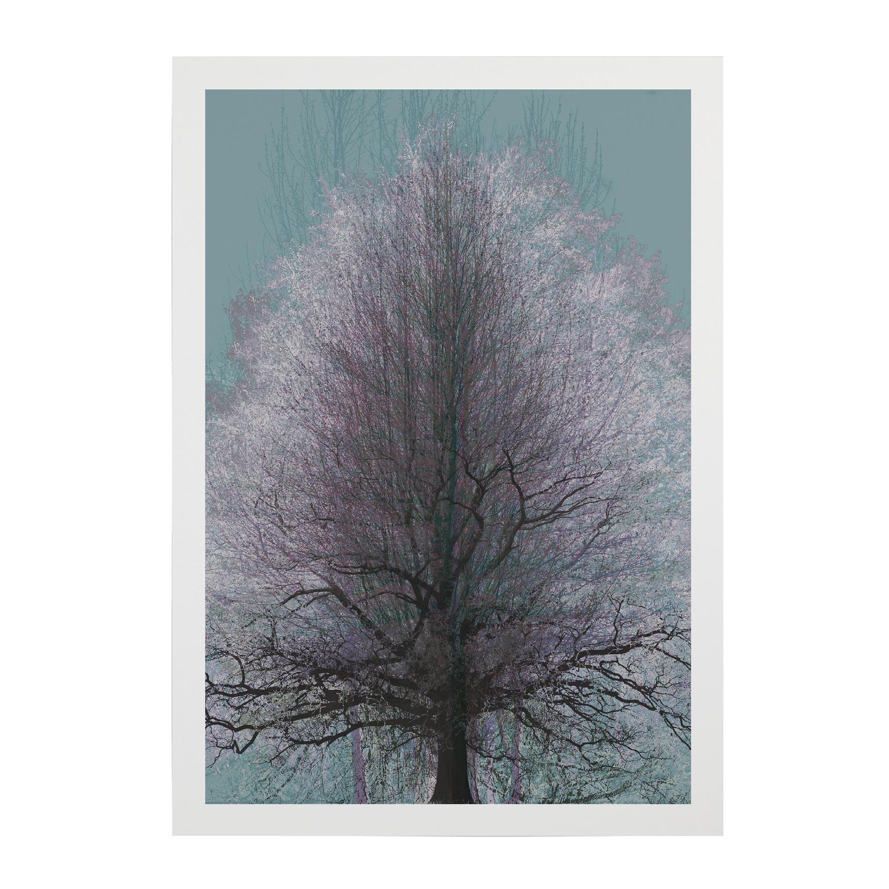 TREE-WEB-PICS-15