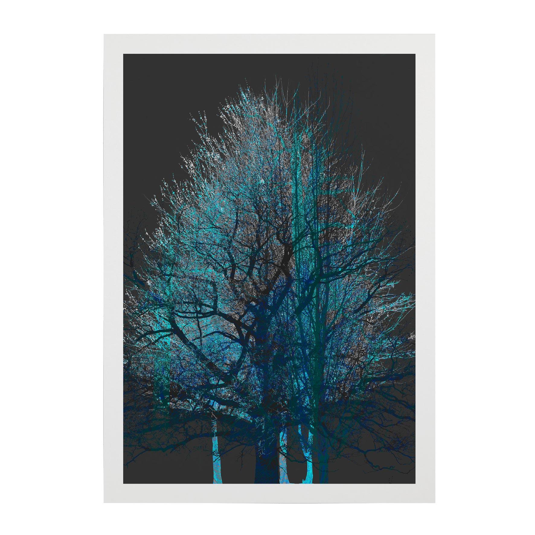 TREE-WEB-PICS-2