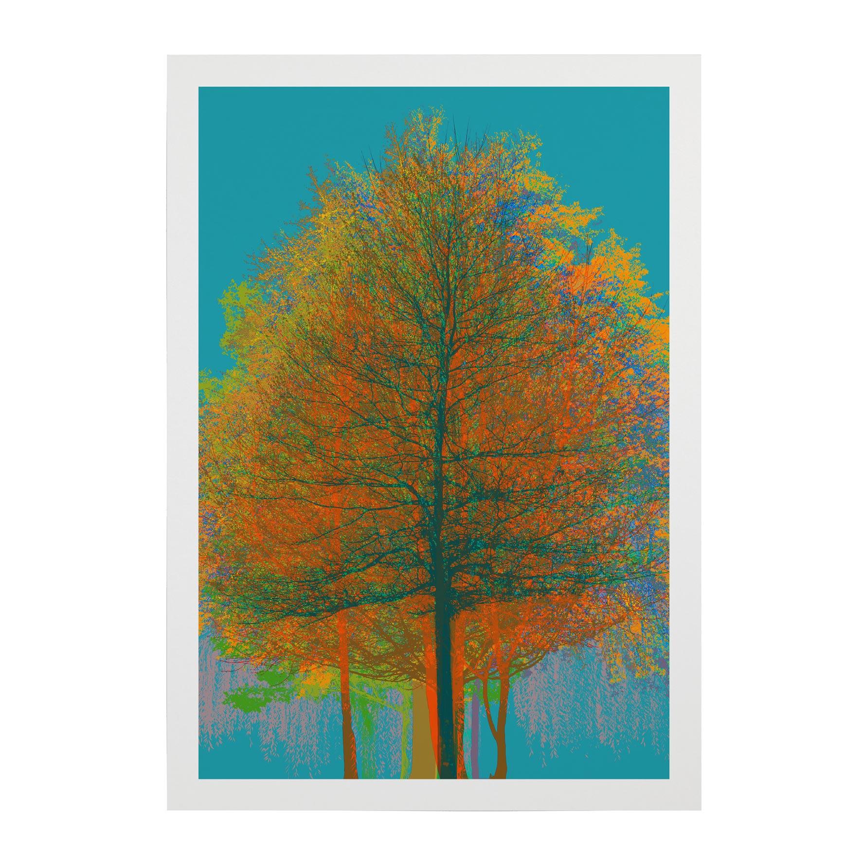 TREE-WEB-PICS-5