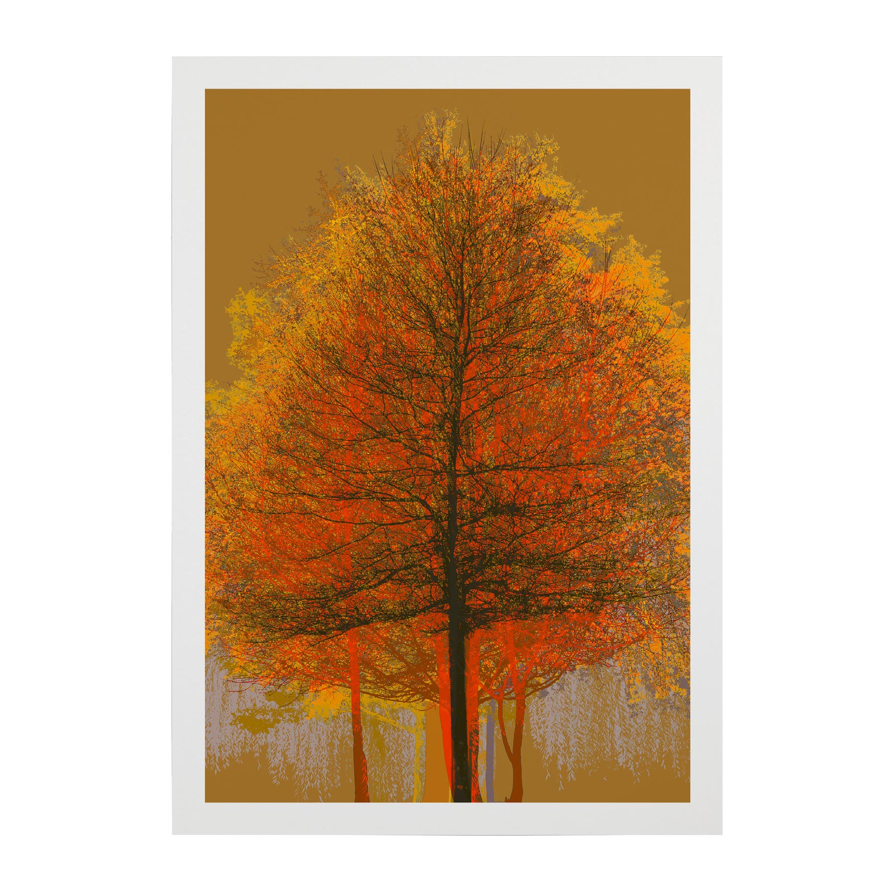TREE-WEB-PICS-6