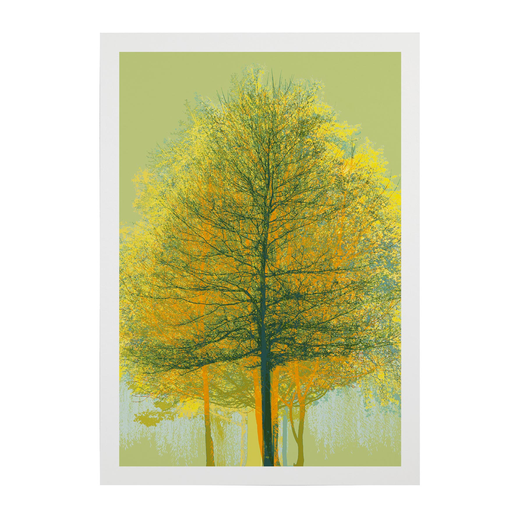 TREE-WEB-PICS-8