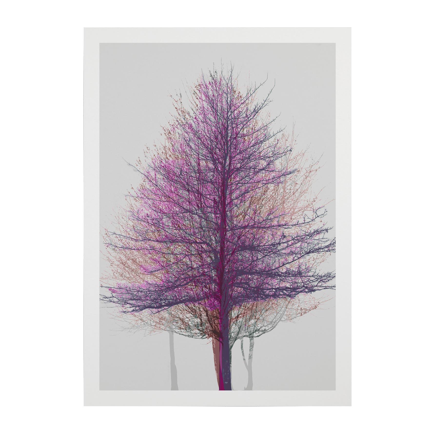 TREE-WEB-PICS-9