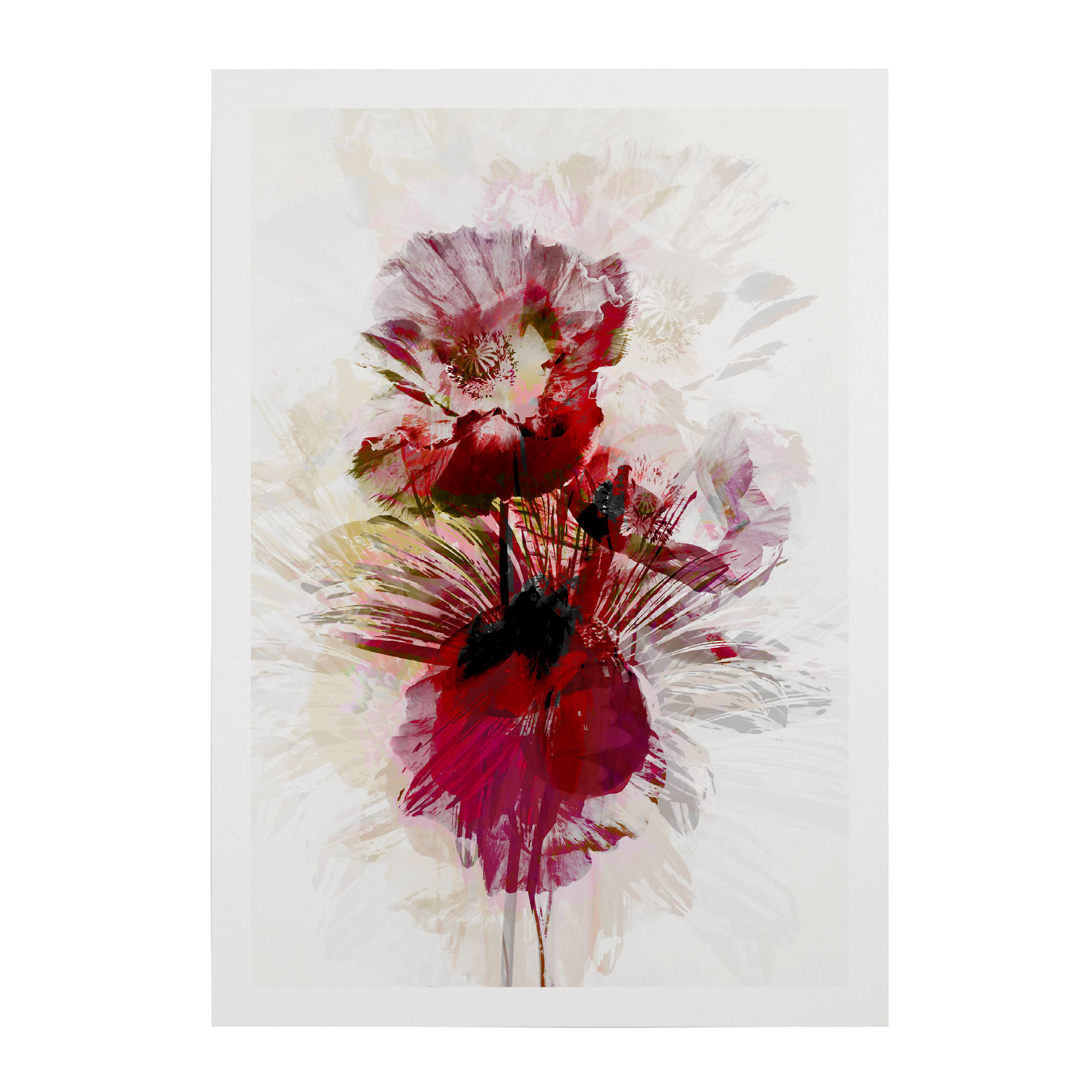 FLOWER-WEB-PICS-4
